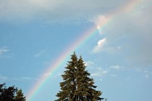 2010 July Pool DeCordova Rainbow 067