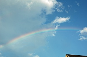 2010 July Pool DeCordova Rainbow 070