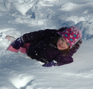 2011 January Snowstorm 038